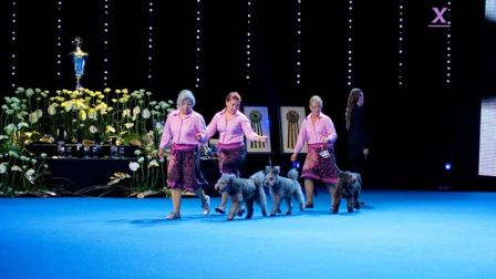 BIS Breeder group WDS2014 - photo Dogxpress