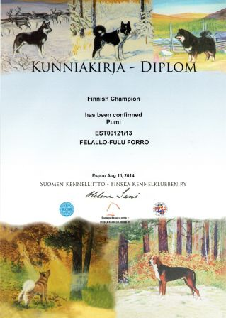 Felallo-Fulu Forro - Finnish Champion