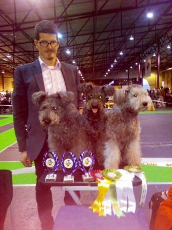 Baltic Winners 2013 in Riga (09 nov 2013) Felallo-Fulu Fiona : Best of Breed
