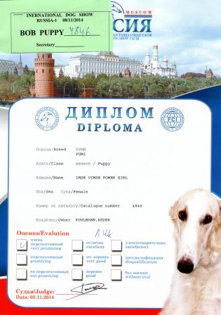 "Diploma Russia1 2014 Imse Vimse Power Girl ""Sandy"""