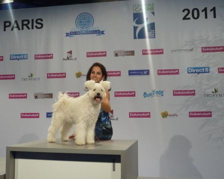 Pumi Szurkebarat Eca Hello-Kitty WORLD WINNER 2011 and BOB + Aurora Lovison